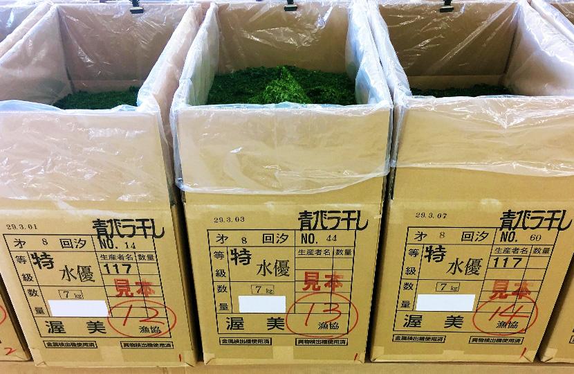 愛知県漁協連合会 共販出荷品